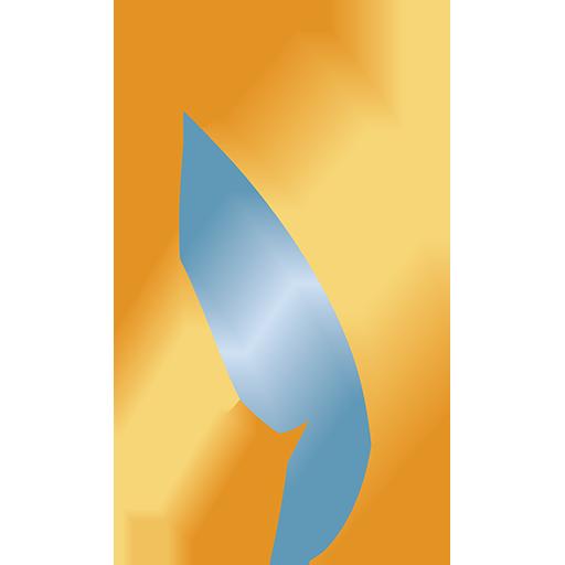 NMNEC logomark